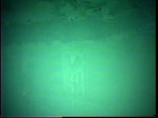 配水池内部調査(壁面)拡大のサムネイル